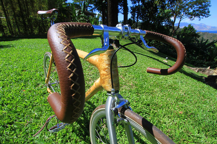 Bamboo Bike Wooden