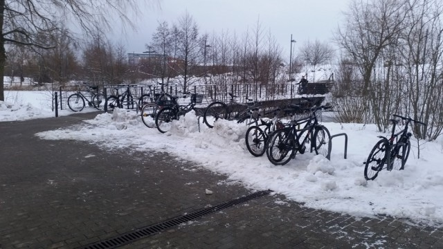 Cycling in Snow Flensburg